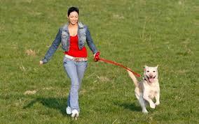 femme marche avec chien